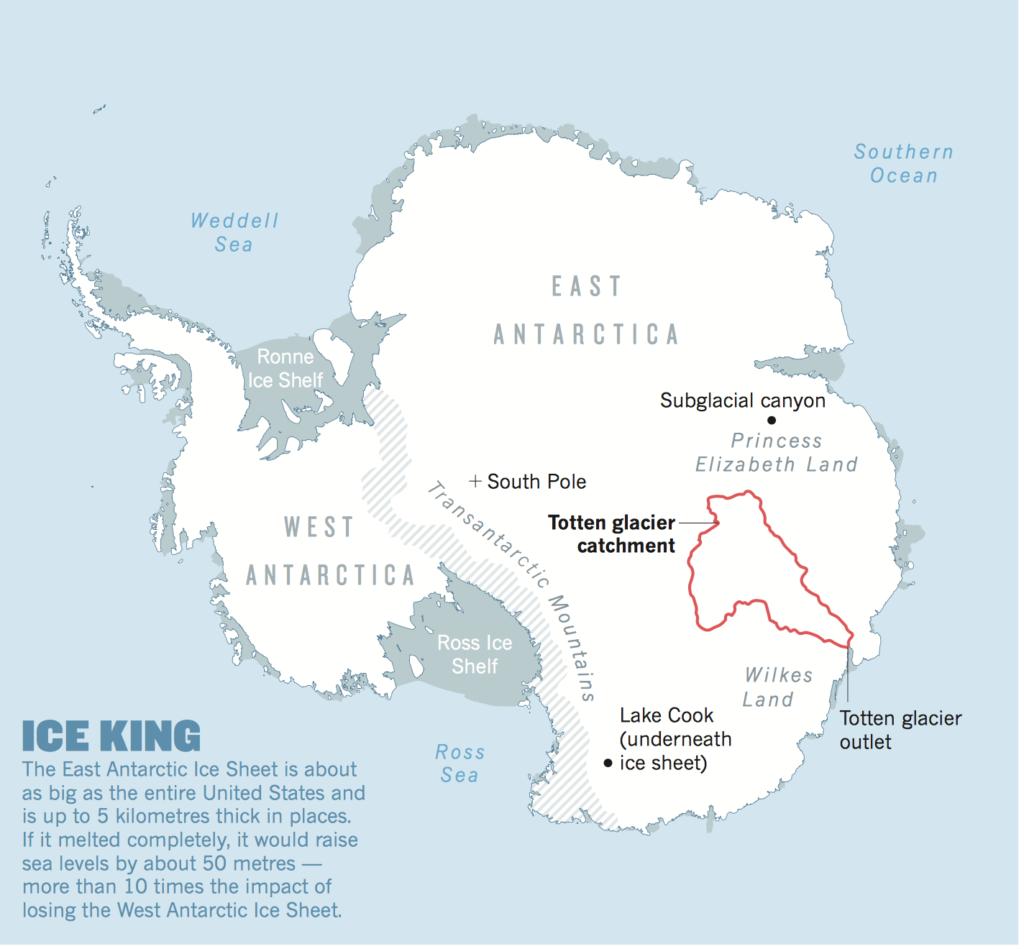 Antarctique fig